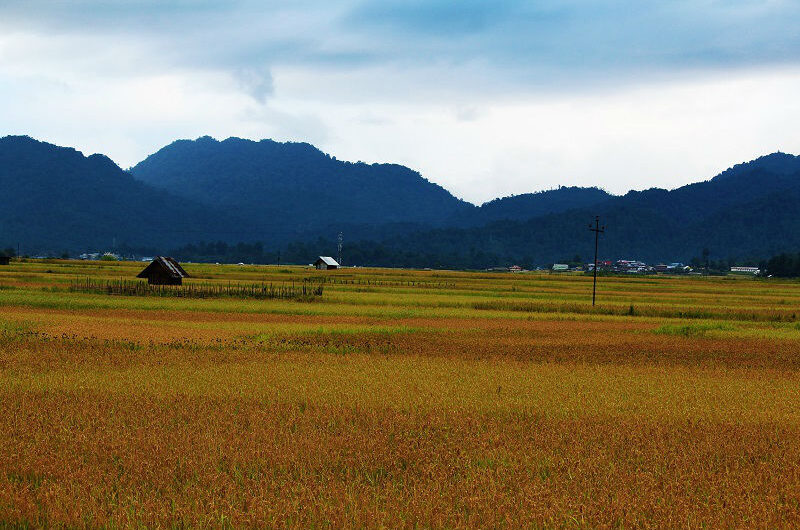 Ziro Valley-Captivating holiday destination in North-East India