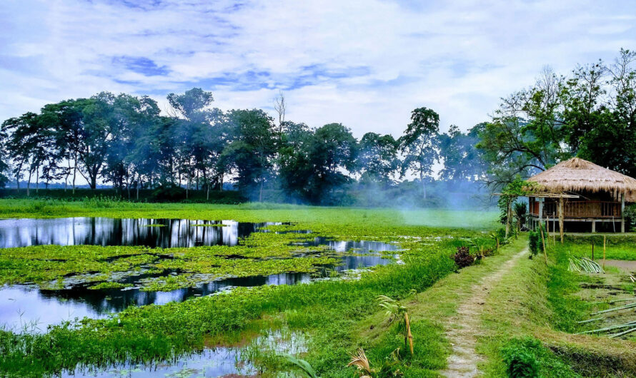 Majuli – World's Largest River Island