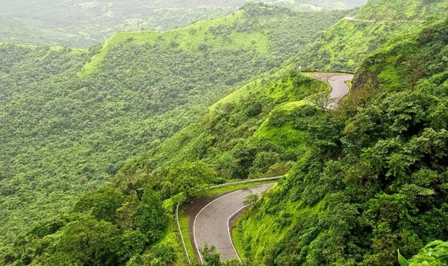 8 Best Tourist Places to Visit in Amboli