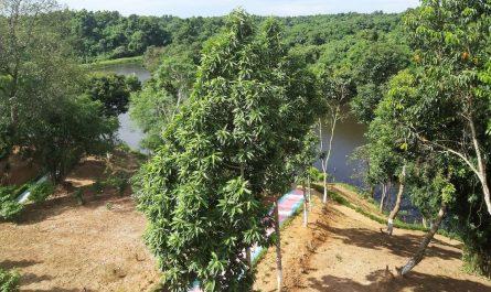 Bardosh Eco Park Tripura