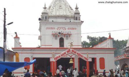 Basti Bhadeshwar Nath Temple