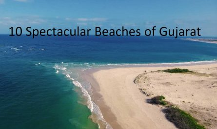 10 Spectacular Beaches of Gujarat