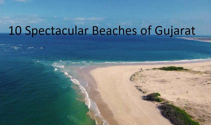 Top 10 Spectacular Beaches of Gujarat