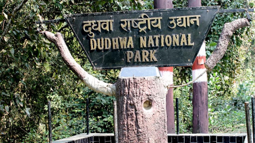 Dudhwa National Park Lakhimpur Kheri