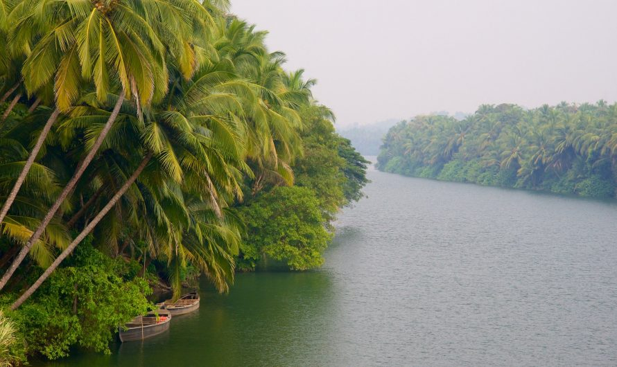 3 Best Places to Visit in Malappuram