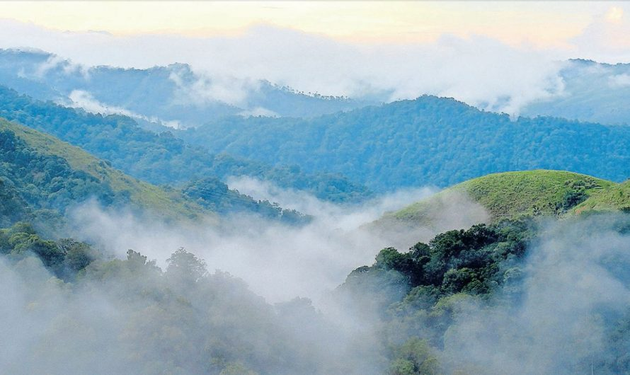19 Best Attractive Places to Visit in Pathanamthitta