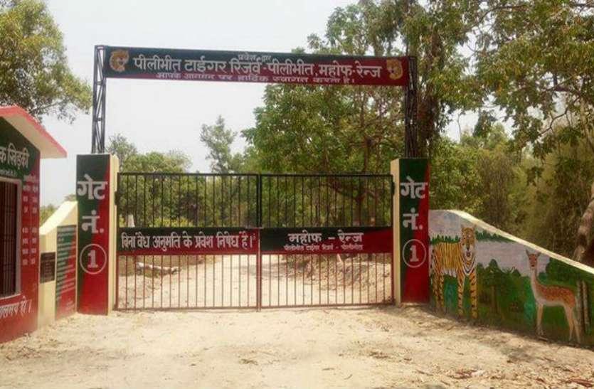 Pilibhit Tiger Reserve Chaloghumane