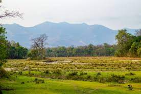 Top 5 Best Tourist Attractions in Shravasti