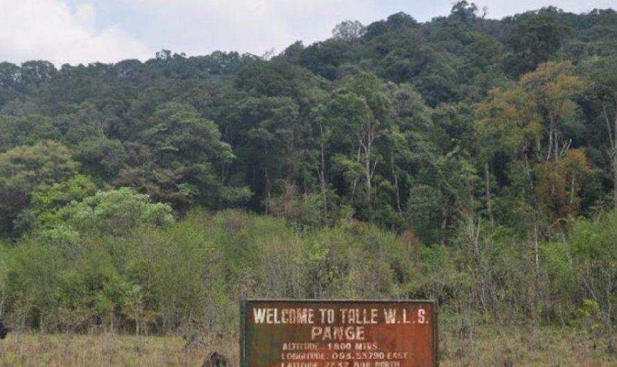 Enchanting Places to Visit in Lower Subansiri