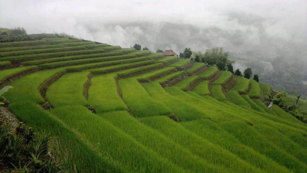 Upper Siang
