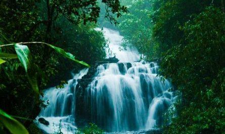 Wayanad Tourism
