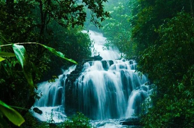 9 Best Places to Visit in Wayanad