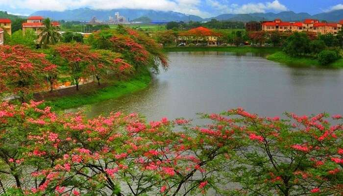 4 Best Tourist Places in Hailakandi