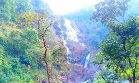 Jashpur