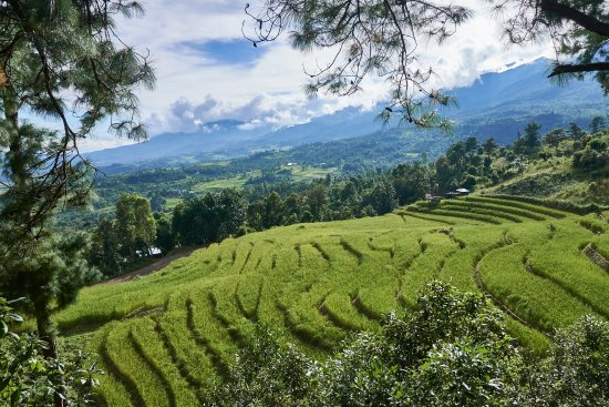 Best Places to Visit in Kangpokpi