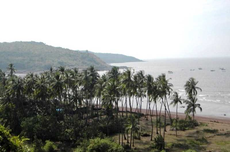 Top 10 Tourist Attractions in Palghar