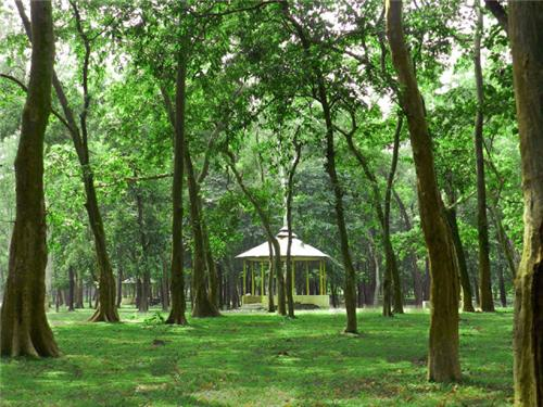 3 Best Places to Visit in South Dinajpur